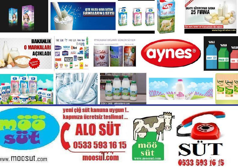 Sağlıklı Süt Markaları