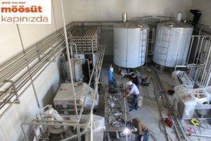 Süt Fabrikası Süt Yoğurt