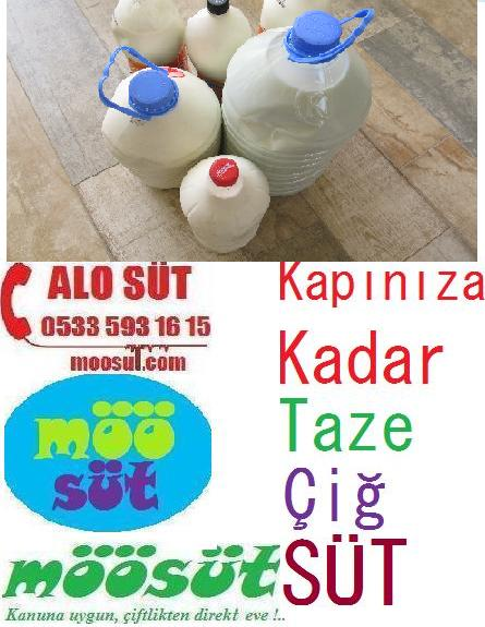Çiğ Süt Artık Pet Şişe Kullanımı