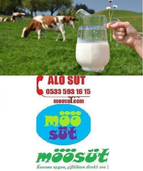 Samsun Çiğ Süt