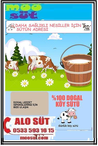 Süt Çiftliğinden Günlük süt