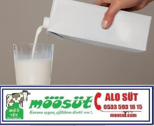 UHT Süt İçmek Faydalı mı ?