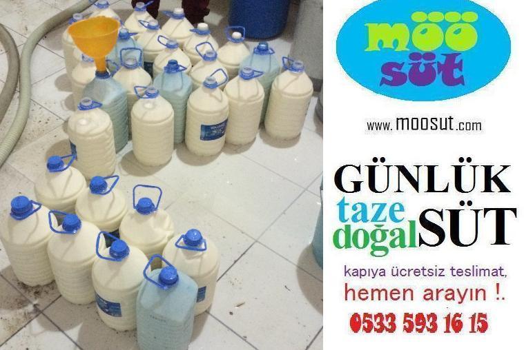 Süt Fiyatlarında Artış